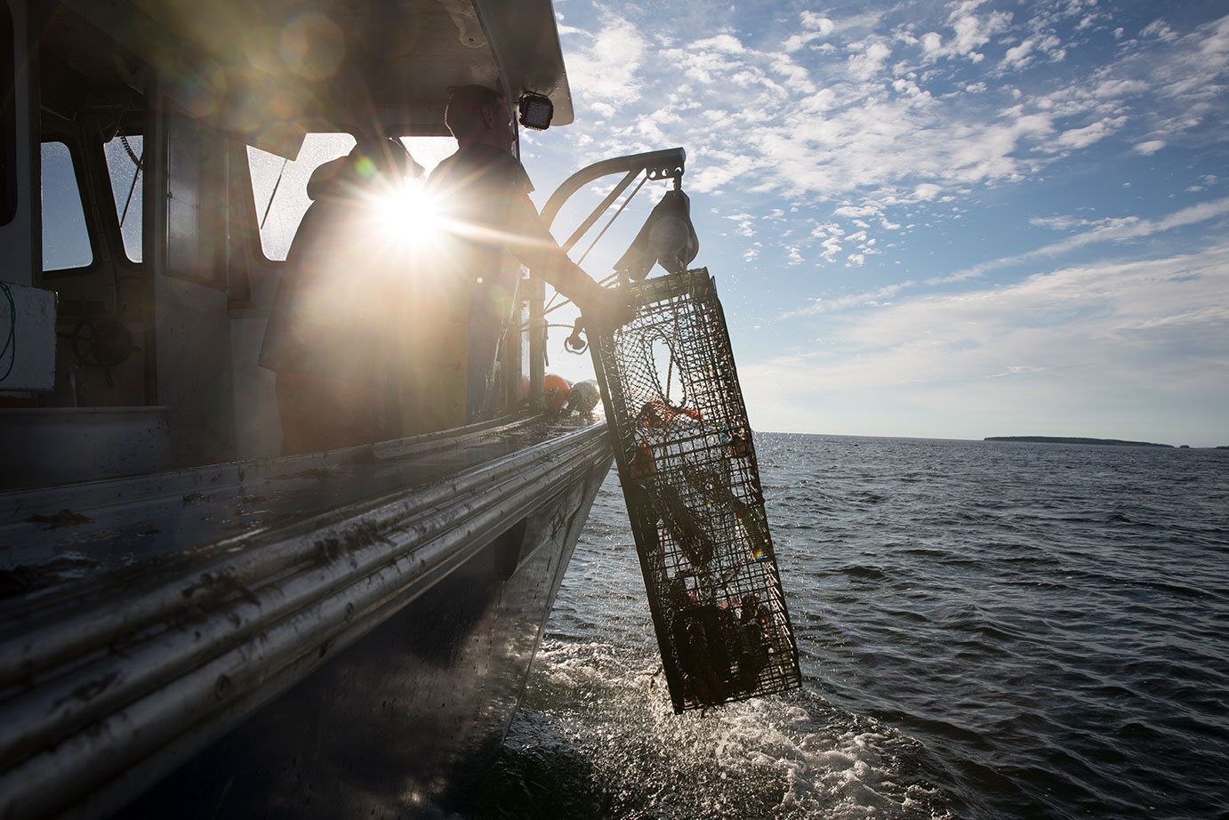 Maine Lobster Industry Stays With Weber Shandwick After Extensive Review